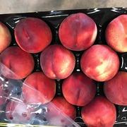 Предлагаем оптовые поставки нектаринов из Испании